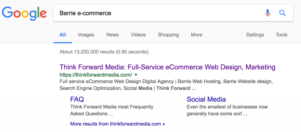 Search Engine Optimization - eCommerce Website Barrie