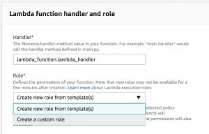 Lambda custom role
