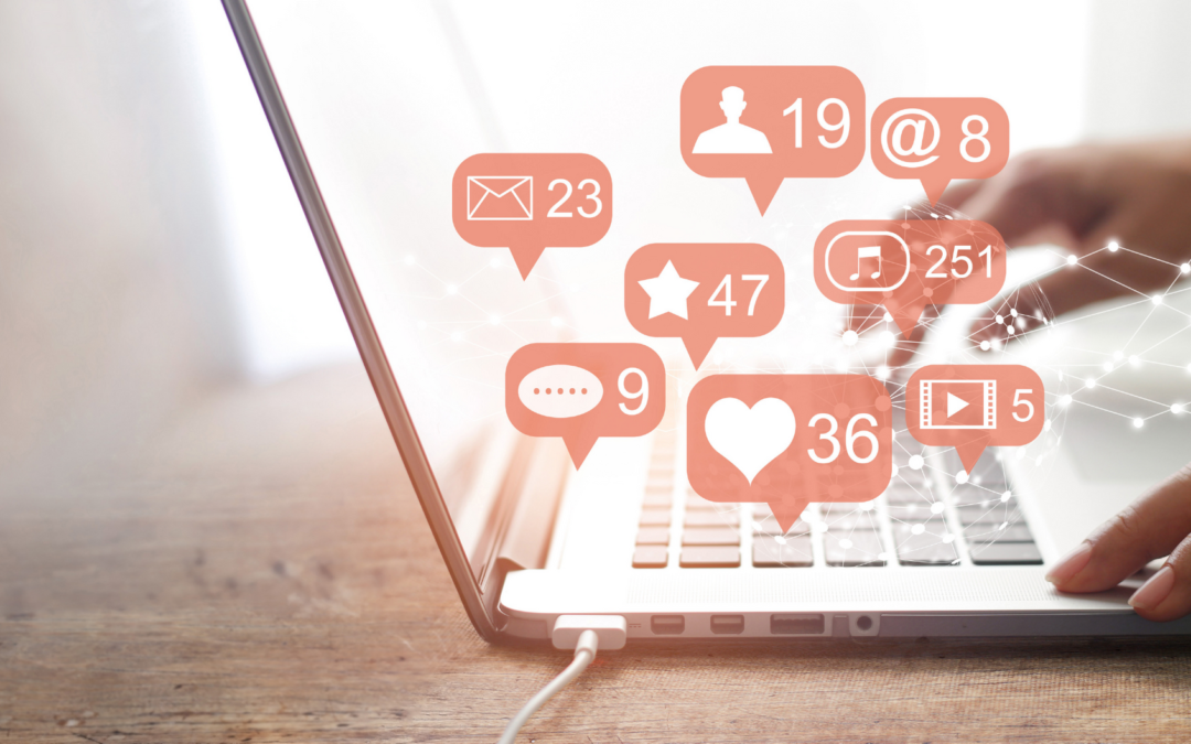 How To Build Your Social Media Following?